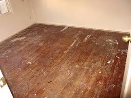 cleaning hardwood floors after removing carpet sell this