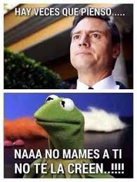 Memes De Cochiloco - sucio bahaha frases coquetas y enamoradas pinterest