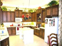 changing kitchen cabinet doors ideas changing doors on kitchen cabinet kitchens the replacement