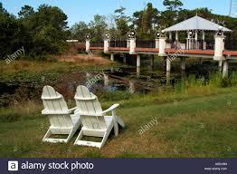 Largo Botanical Garden The Florida Botanical Gardens At Largo Florida Usa The Botanical