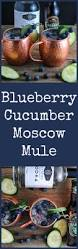 blueberry martini recipe blueberry cucumber moscow mule recipe vodka lime moscow and