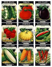 Vegetable Garden Labels by 18 Best Diy Wedding Images On Pinterest Wedding Wedding Stuff
