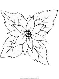 fiori disegni disegni da colorare fiori di natale timazighin