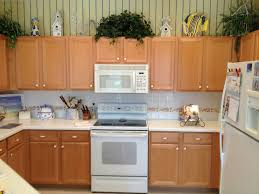 What Is Refacing Kitchen Cabinets by Custom Kitchen Cabinets Naples Fl Refacing Kitchen Counter Tops