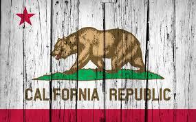 California Flag Bear Facts About California Solar Solaron