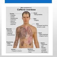 Side Effects Of Bull Energy Energy Drinks