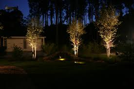 Landscape Up Lights Landscape Uplights Gardening Design