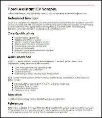 curriculum vitae layout 2013 nissan resume exle uk exles of resumes