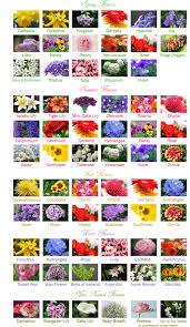 Wedding Flowers In October Best Wedding Flowers By Month Blog Poplar Grove Banquet Hall