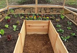 Raised Garden Beds Kits Cedar Complete Raised Garden Bed Kit 8 U0027 X 8 U0027 X 20