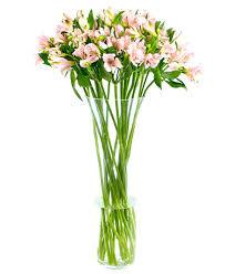 weekly flower delivery weekly flower delivery alstroemeria pink