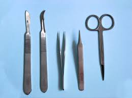 dissection tools dissection pinterest