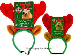 reindeer antlers headband dog antlers headband in small large