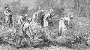 1865 a revolutionary turning point in u s history socialist