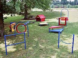 Dog Playground Equipment Backyard by 106 Best Dog Agility Equipment Images On Pinterest Dog Agility
