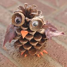 pine cone owl recipe pine cone pine and hiking