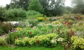 traditional cottage garden florist king u0027s lynn norfolk