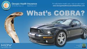 what is cobra insurance youtube