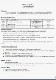 best resume objective statement sample template example