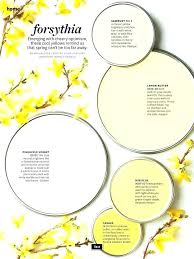 light yellow paint colors shades of yellow paint best yellow paint colors what make soft and