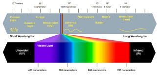 Visible Light Examples Photosynthetic Pigments The A Level Biologist Your Hub
