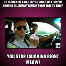 Super Troopers Meme - super troopers how about cat game haha one of my fav movies