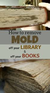 how to get rid of mold on wood furniture simple image titled