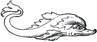 dolphin the fish has a large eye coloring pages dolphin coloring