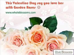 Wholesale Flowers Online Wholesale Flowers Online Www Wholeblossoms Com Video Dailymotion