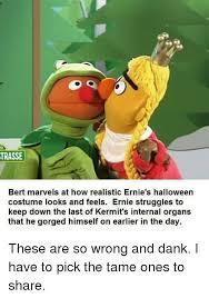 Ernie Bert Halloween Costumes Trasse Bert Marvels Realistic Ernie U0027s Halloween Costume