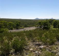 texas native plant society dixon water foundation field days