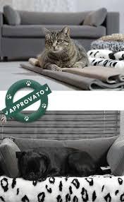 divanetti per gatti lettino per cani e gatti sfoderabile ortopedico design