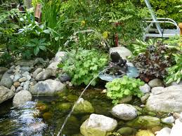 small backyard garden house design with ponds stone and low