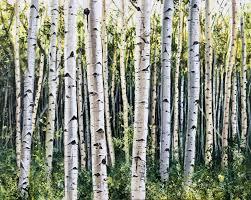 aspen trees aspen trees art