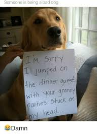 I Am Sorry Meme Memes - someone is being a bad dog i m sorry jumped on the dinner guest with