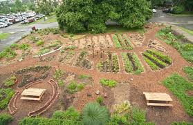 Permaculture Vegetable Garden Layout Garden Design Garden Design With Permaculture Ceeds With Home
