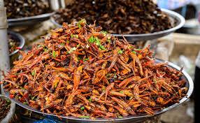 insectes dans la cuisine nourriture d insectes chez le cambodge photo stock image du