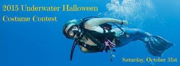 underwater costume contest pura vida divers discover south