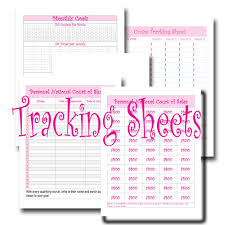 Mary Kay Party Invitation Templates Complete Planner Pages For Mary Kay Consultants 8 1 2 By 11