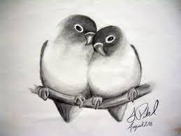 pencil drawings birds pretty good blog bird pencil drawing