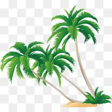 green coconut tree vector coconut tree painted green png