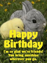rabbit birthday rabbit happy birthday cards birthday greeting cards by davia