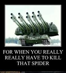 Kill Spider Meme - you really mean to kill that spider