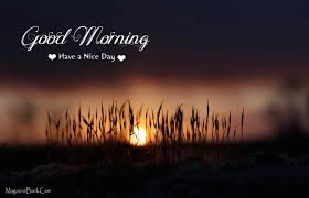download free beautiful good morning quotes the quotes land