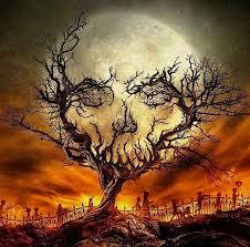 best 25 spooky pictures ideas on pinterest classy ideas spooky