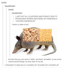 Armadillo Meme - we all make mistakes tumblr know your meme