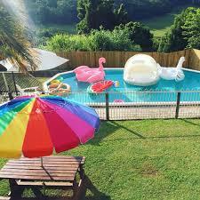 pool backyard pool floats flamingo swan watermelon pretzel sunny