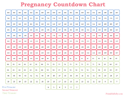countdown chart template 28 images countdown chart printable