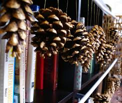 Pinecone Gold Brushed Pine Cone Ornaments Easy Last Minute Decor U2014 The
