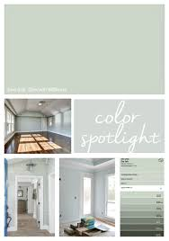 highlighting why sherwin williams sea salt is one of the most